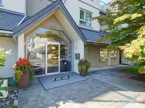 Condos for Sale in Sidney, British Columbia $234,500