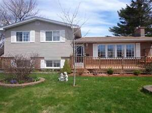 37 Newcombe Dr