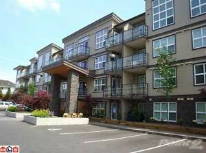 Condos for Sale in Abbotsford, British Columbia $259,000