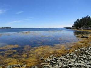 Homes for Sale in Sheet Harbour, Nova Scotia $135,000