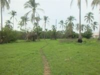 Panama titled land 2000m2. Only 350m from the beach!
