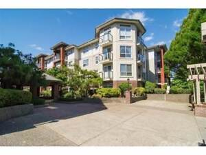 Condos for Sale in Langley City, British Columbia $409,000