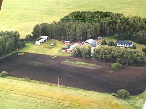 Chobotuk Acreage - 10 Acres (approx)