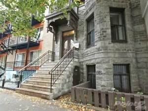 Mcgill ghetto: new renovated 11/2 for rent 1st Sept
