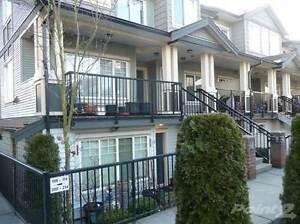 13958 108 Ave Surrey B.C