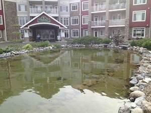 Condos for Sale in Spruce Grove, Alberta $354,700