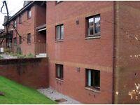 1 Bedroom Flat To Let Kirkpatrick Court