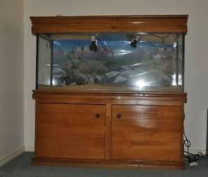 Reptile enclosure / aquarium (water tight Orange Orange Area Preview