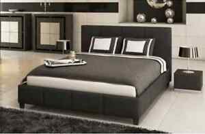 Brand New Monica Pu Leather Queen Bed.Mattress Not Included Seven Hills Blacktown Area Preview