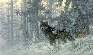 Phantom of the North by Larry Fanning Strathcona County Edmonton Area image 1