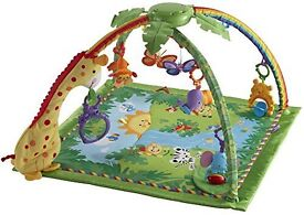 Rain Forrest fisher price play mat