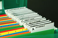 BUSINESS FILING SYSTEM $50