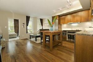 Kitsilano - 1 BR and den -  Beautifully furnished, private