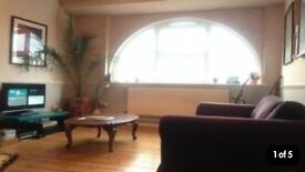 1 bed flat Stoke Newington for 2 Bed property