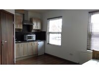 Spacious self contained studio flat