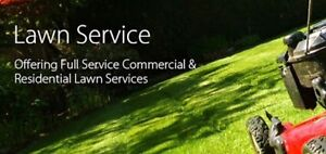 Lawn Mowing And Lawn Services Commercial And Residential Hallett Cove Marion Area Preview