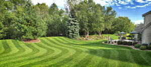 Low Cost Lawn Care Saint John and KV