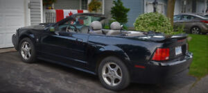 2003 Ford Mustang Convertible 3.8 Litre V6
