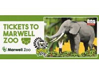 Marwell Zoo Child Goes free ticket