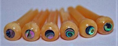 Acoustic Sets Guitar Bridge -  Set 6 acoustic guitar bone bridge pins (vintage) with Paua abalone dot (size 1)