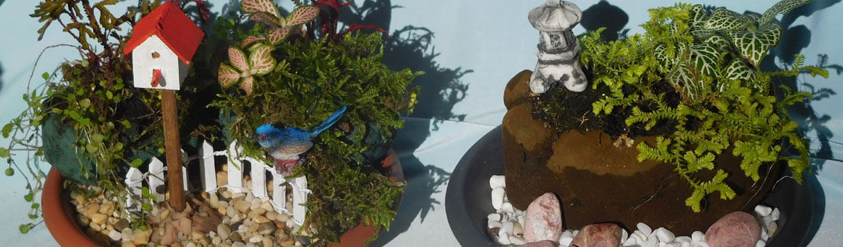 Lyns Garden Shed Art Studio
