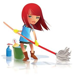 LILY ROSE DOMESTIC CLEANING Lane Cove Lane Cove Area Preview