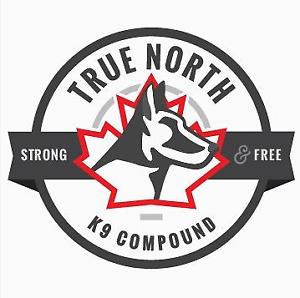 True North K9 Compound