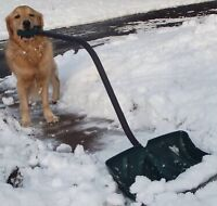 Cheap Snow Removal Services ❄️