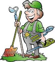 ***Lively Lawn - Summer Landscaping - 15% off all services***