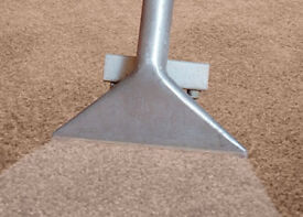 PROFESSIONAL CARPET CLEANING - THE BEST PIRCE