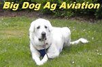Big Dog Ag Aviation