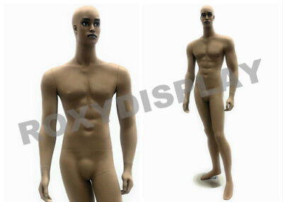 Male Fiberglass Chocolate Muscular Mannequin Dress From Display Md-ccf2