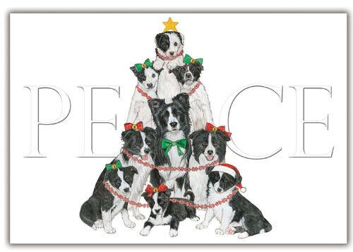 Border Collie Christmas Cards Set of 10 cards & 10 envelopes