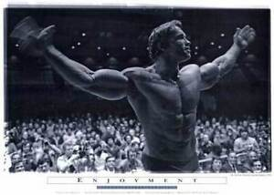 Limited Edition Arnold Schwarzenegger Posters, 5 Set Series, Pum