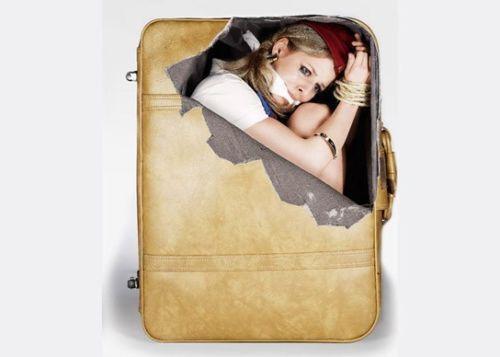 Luggage stickers ebay