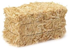 Free rabbit food and hay