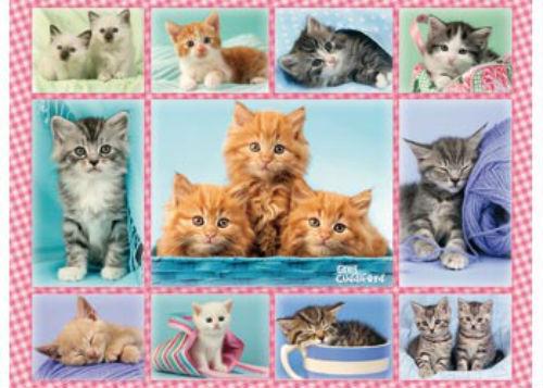 Ravensburger 100 XXL Piece Cute Kittens Jigsaw Puzzle RB10530-4