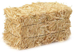 Local Cat Rescue in need of STRAW for shelters
