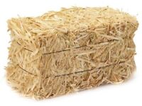 Free Hay Bales - approx 40 in total... Been kept dry and under cover..