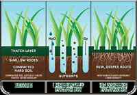 SPRING LAWN CORE AERATION