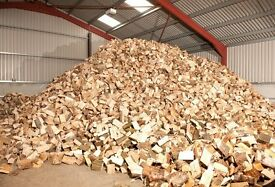 Seasoned Firewood Logs For Sale Bournemouth Dorset & New Forest - Westbeams Tree Care & Firewood