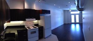 Studio Apt for rent in Downtown Belleville for Oct 1