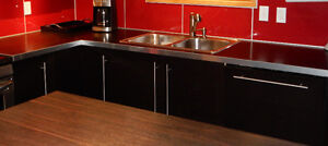 Kitchen countertops with double bowl sink Windsor Region Ontario image 4