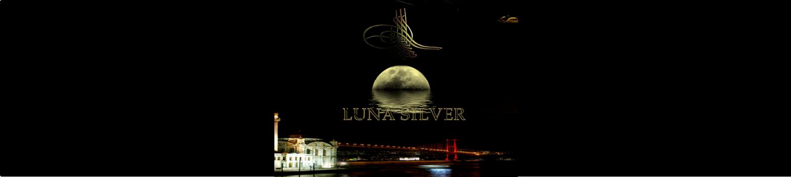 Luna Silver Shop