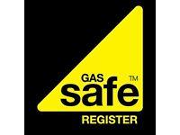 Gas/Heating Engineer.