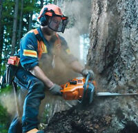 Great selection of Husqvarna Chainsaws @ OttawaChainSaws.com
