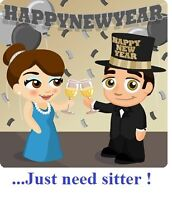 New Year's Party, need babysitter for your children?