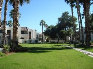 Scottsdale Condo for Rent