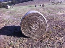 Meadow Hay Meadows Mount Barker Area Preview