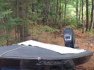 13ft checkmate with 85hp Peterborough Peterborough Area image 2